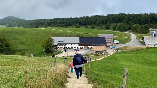 Eine gründe Hügellandschaft und einen Weg der herunter zu einem Restaurant führt.
